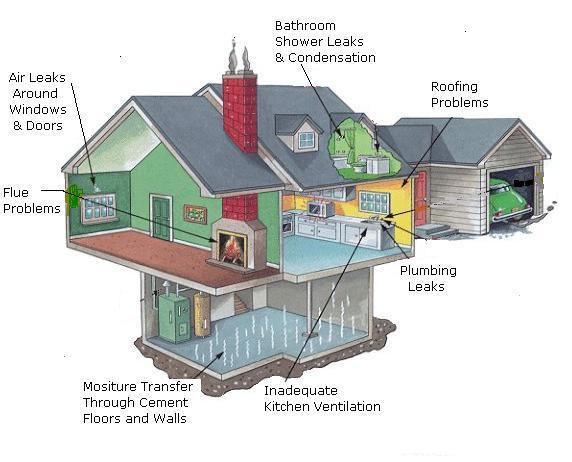 King Home Inspection Llc Mold